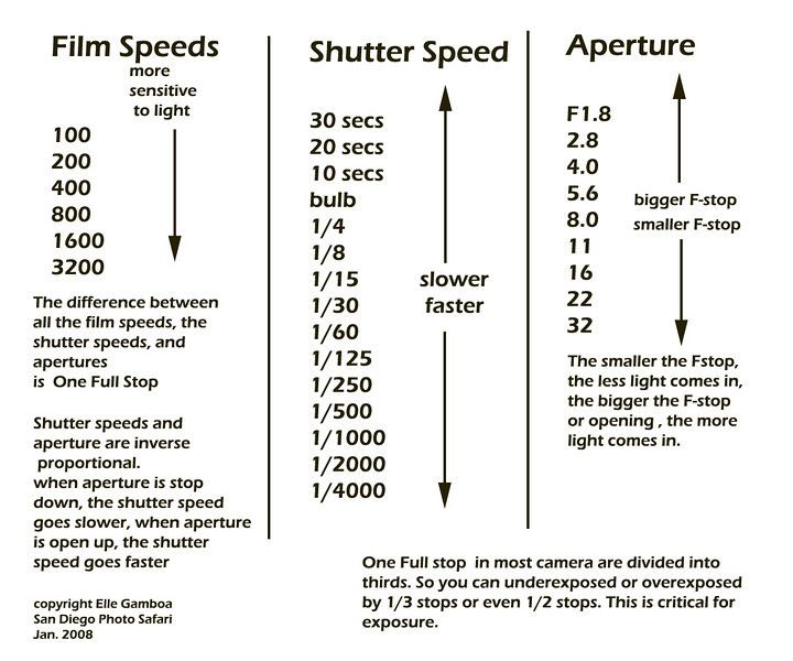 aperture shutter speed iso tutorial